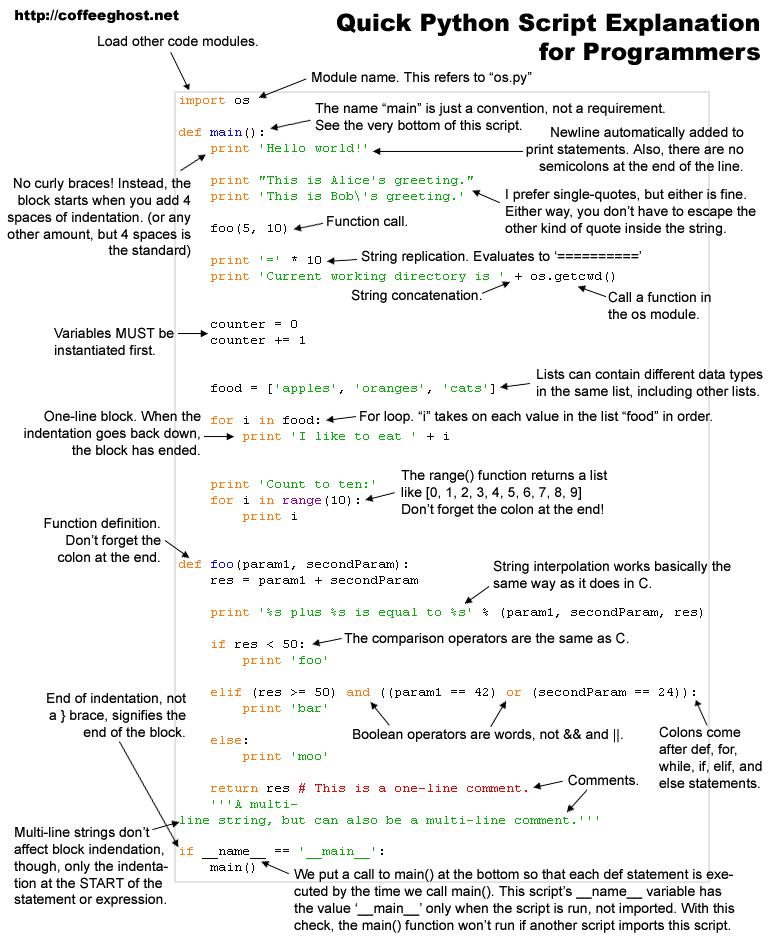 Quick Python Script Explanation for Programmers
