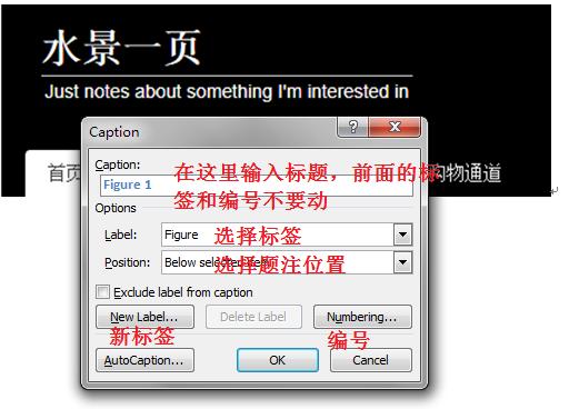 Word 图片题注对话框